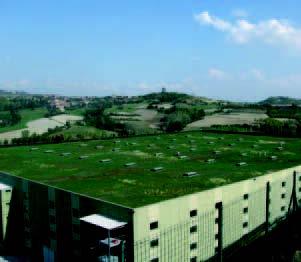 tetto verde estensivo